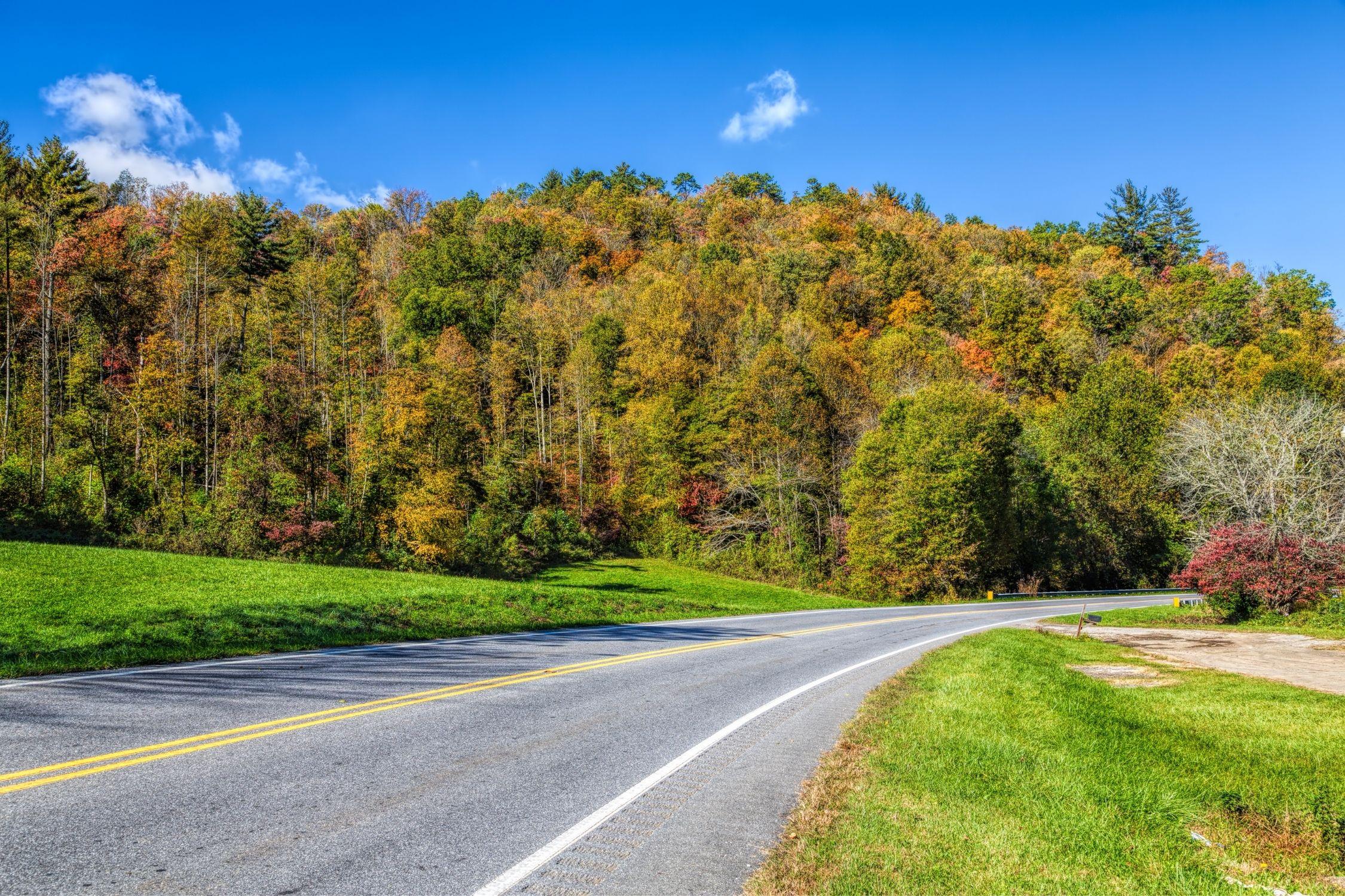 South Carolina Scenic Byway