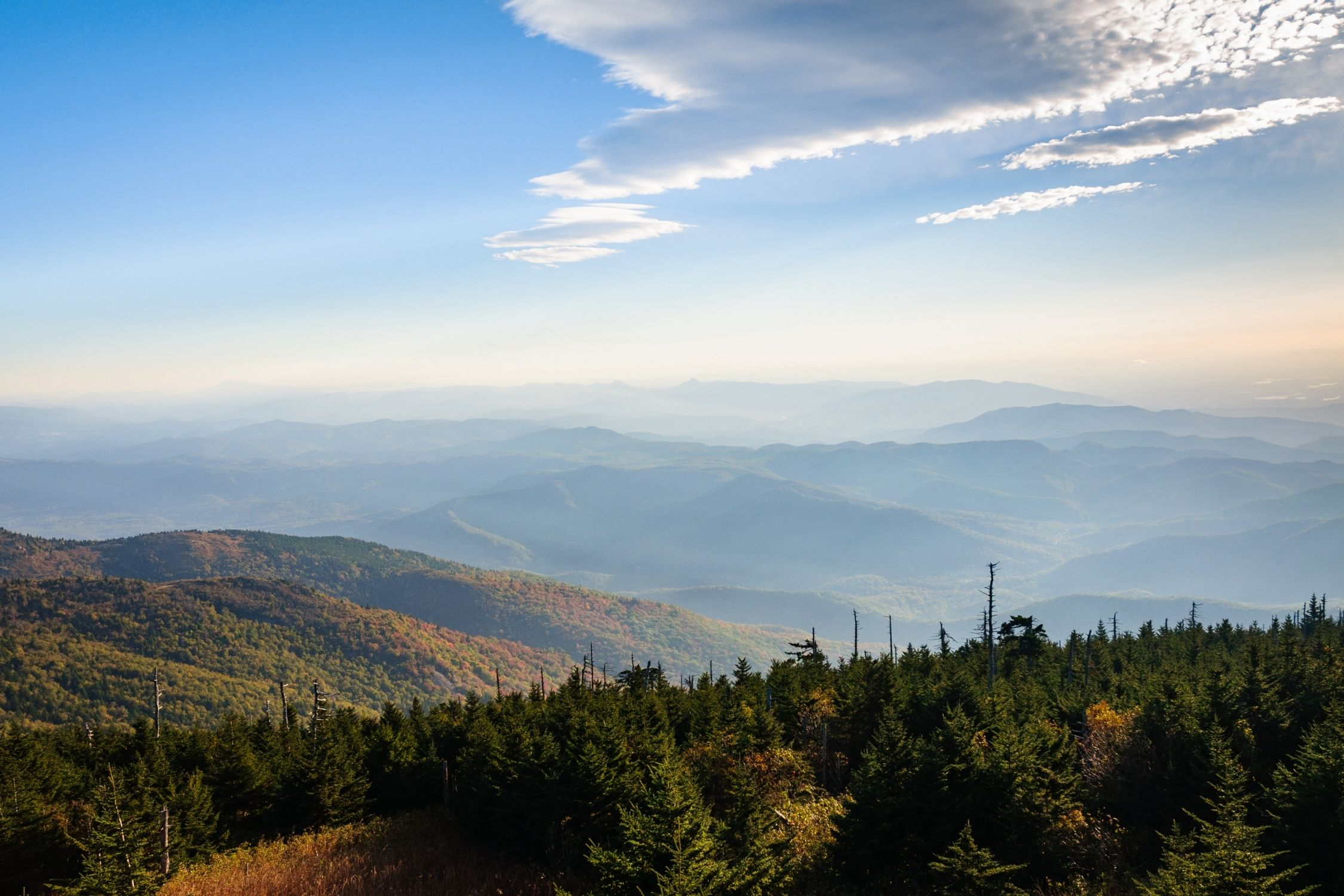 The View From Mount Mitchell