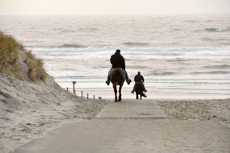 horseback-ride-in-beaufort-nc