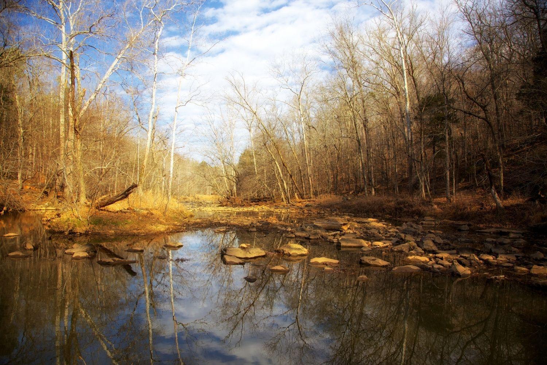 Haw River Landscape Image in Winter
