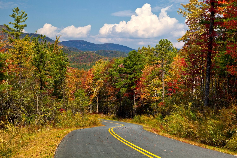 Best State Parks In North Carolina
